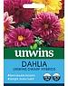 Unwins Dahlia - Unwins Dwarf Hybrids