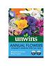 Unwins Annual Flowers (Dwarf) -  Unwins Special Mix