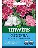 Unwins Godetia - Azalea Flowered Mix