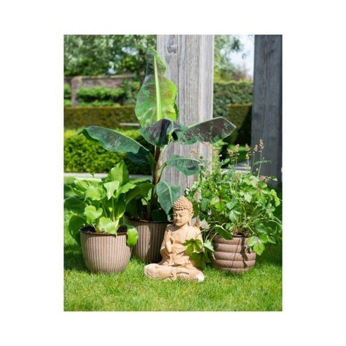 Decoris Brown Planter
