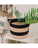 Sass & Belle Black And Grass Stripe Basket