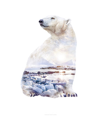 Faunascapes Faunascapes Poster Polar Bear(different sizes)