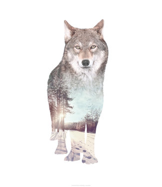 Faunascapes Faunascapes Poster Wolf (diverse maten)