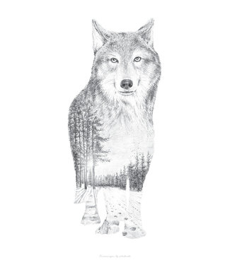 Faunascapes Faunascapes Poster Pentekening Wolf (diverse maten)