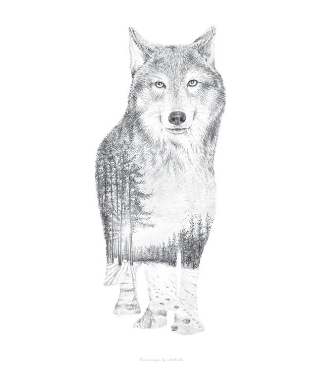 Faunascapes Faunascapes Poster Pencil Drawing Wolf (different sizes)