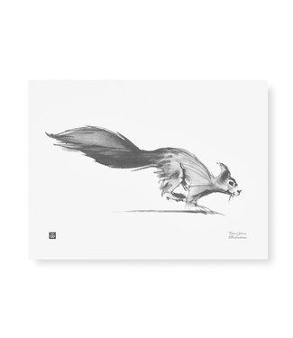 Teemu Järvi  Teemu Järvi Poster Eekhoorn 30 x 40 cm
