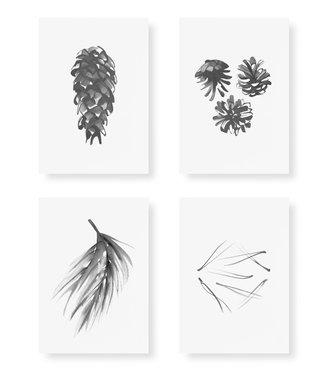 Teemu Järvi  Teemu Järvi Card Set Conifer A5