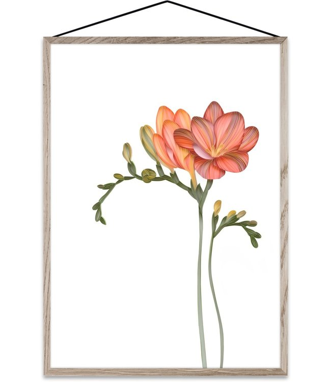 Paper Collective Forever Flower 02 Transparante print Freesia A4