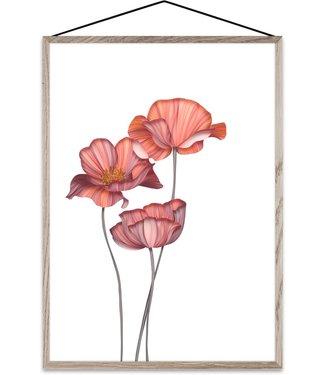 Paper Collective Paper Collective Forever Flower 01 Transparante print Klaprozen A4