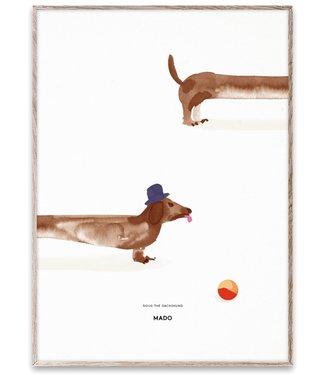 MADO Poster Doug de teckel  50 x 70 cm