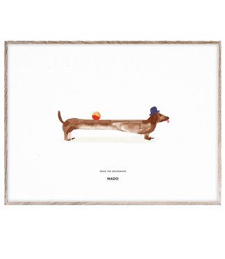 MADO Poster Doug de teckel  30 x 40 cm