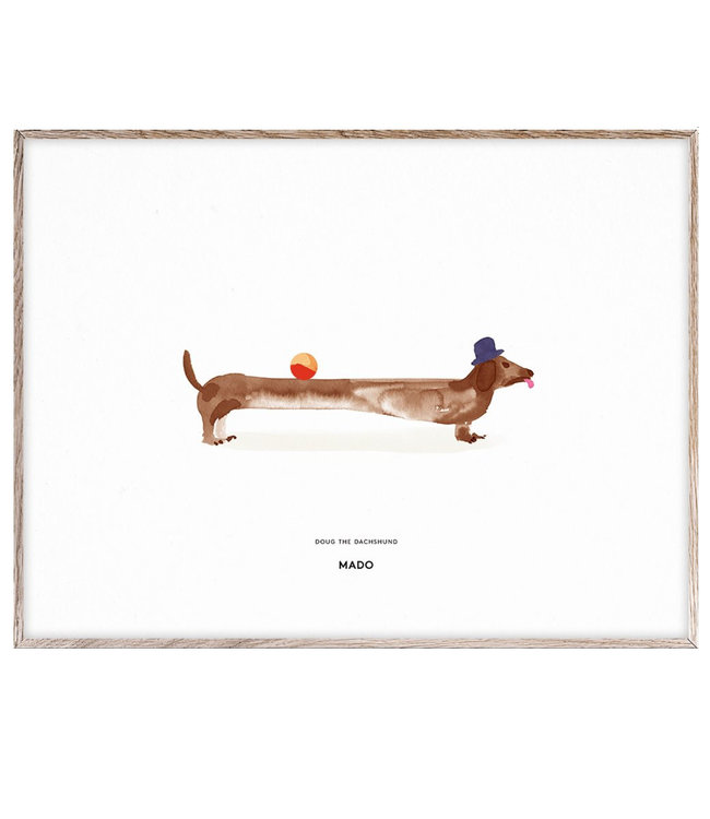 MADO Poster Doug the Dachshund 30 x 40 cm