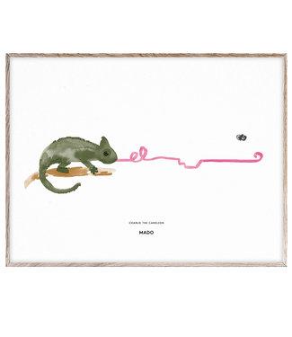 MADO Poster Charlie the Chameleon 30 x 40 cm
