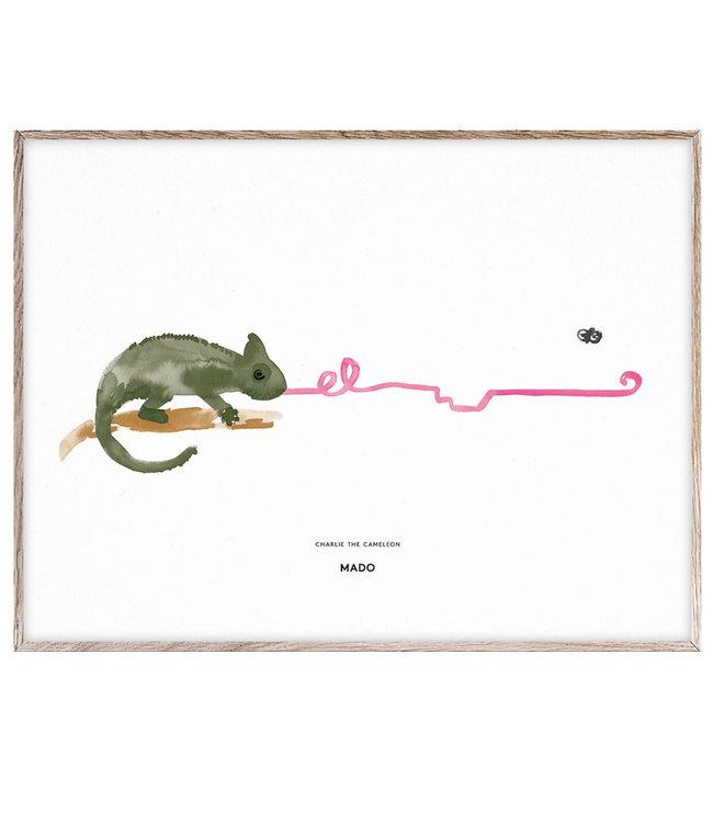 MADO Poster Charlie de kameleon  30 x 40 cm
