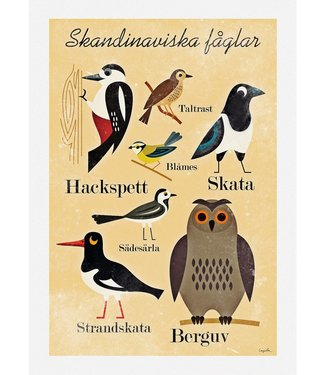 OMM Design OMM Design Poster Scandinavische Vogels 50x70cm