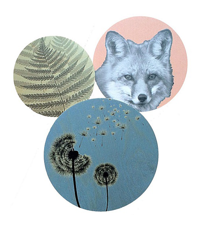 dims Dims Walldots Foxy Dandelion Wall Decoration Set of 3