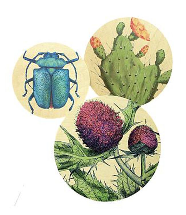 Dims Walldots Botanic Wanddecoratie Set van 3