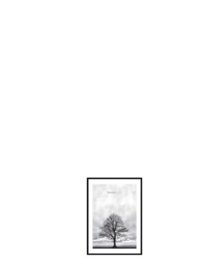 Incado Incado Nordic Line Slim Frame Black A5