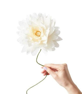 Studio About Studio About Paper flower Grand Dahlia crème/yellow