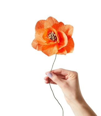 Studio About Studio About Paper flower Poppy red