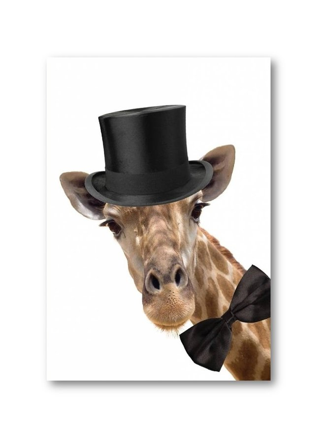 Poster  Giraffe with hat   A3
