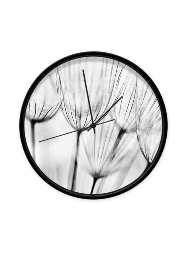 Clock dandelions