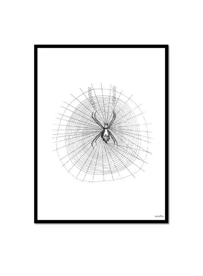 Poster Spider | 20x25 cm