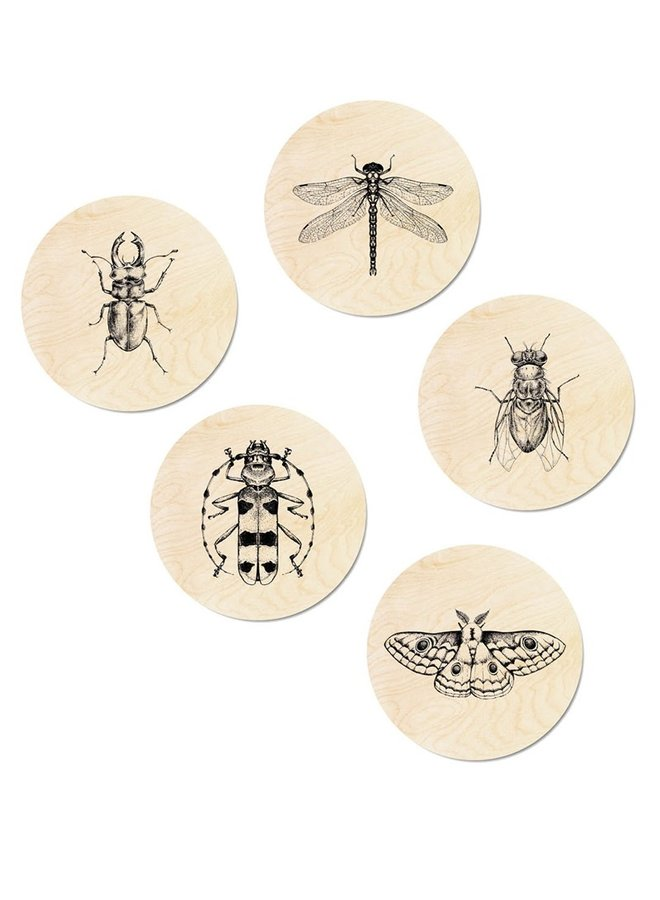Muurcirkel hout Insects set/5