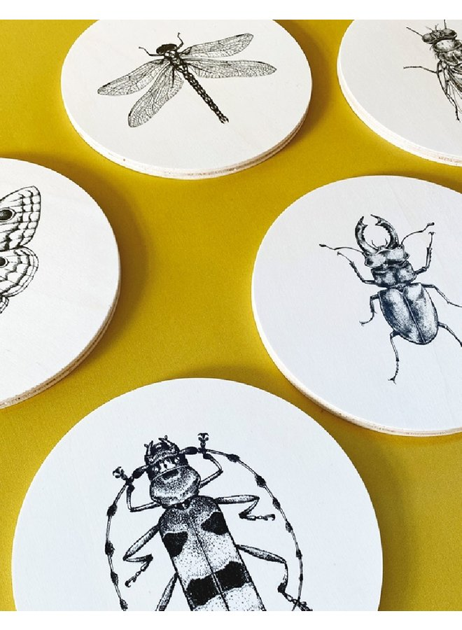 Set wooden wall circles Insects