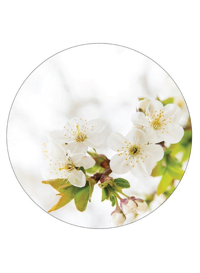 Muurcirkel blossom wit