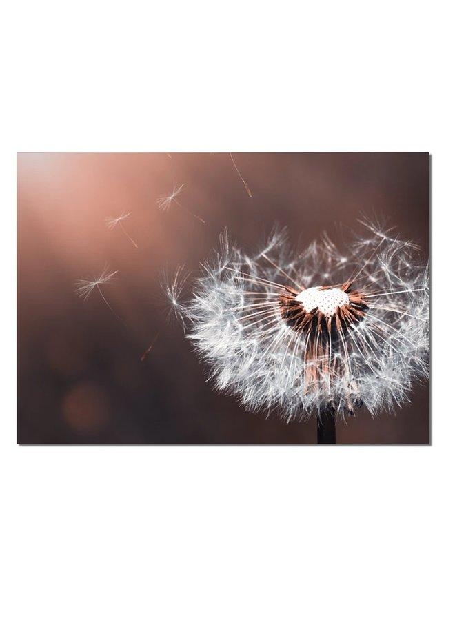 Wall rectangle dandelion