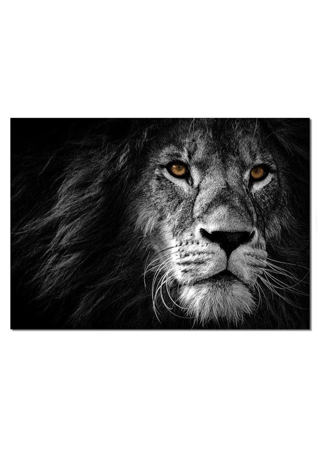 Wall rectangle lion black