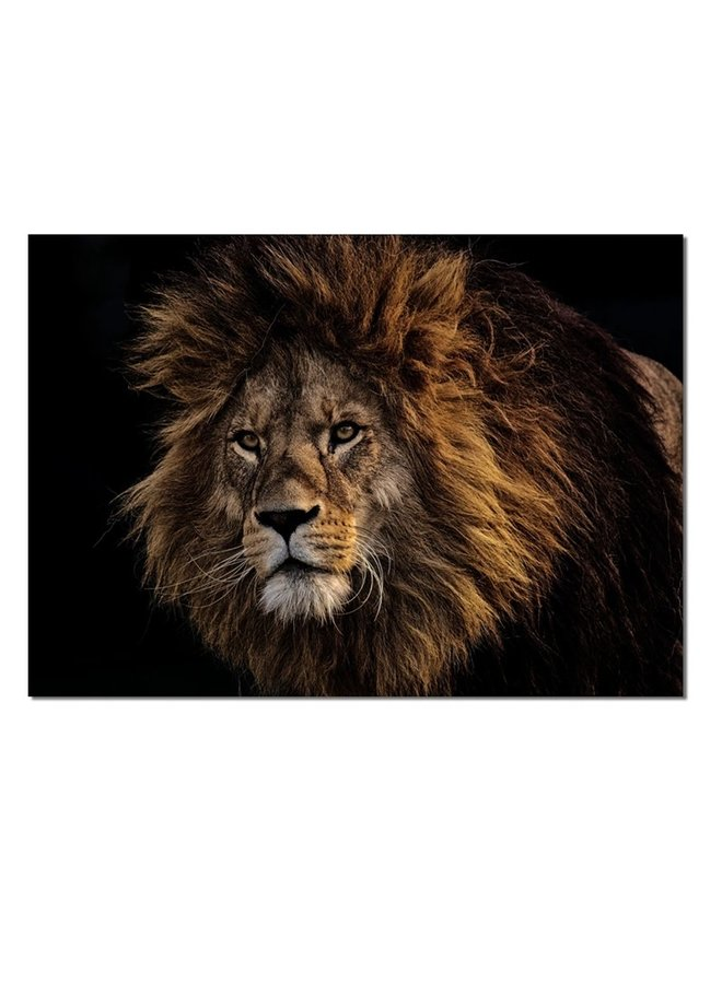 Wall rectangle lion brown