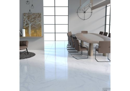 CARRARA MARMERLOOK HOOGGLANS 60×60