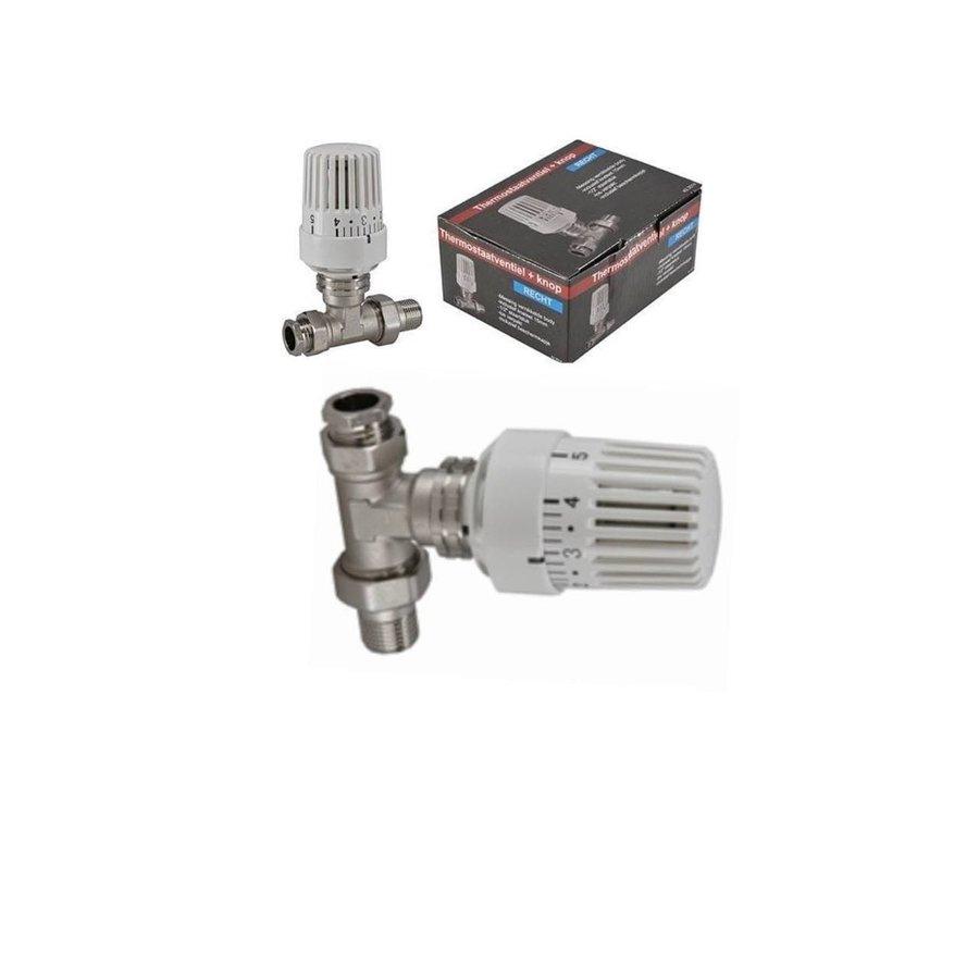 Paneelradiator T22 H300-3