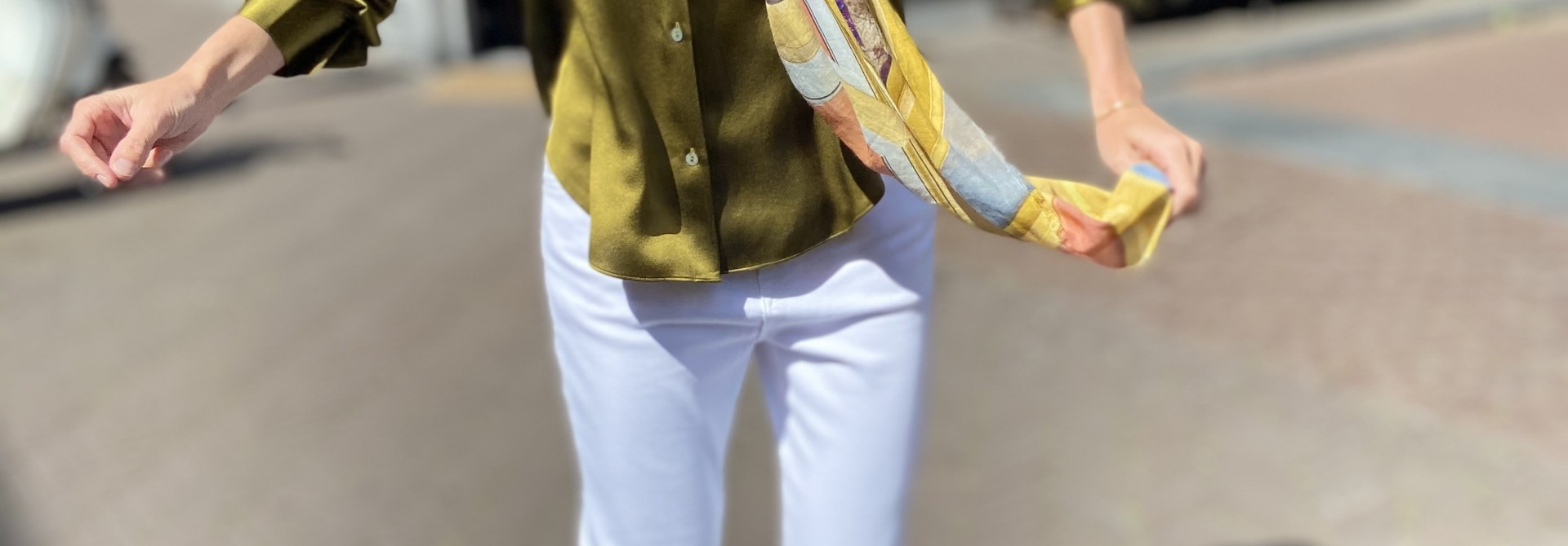 Blouse  Shaped Collar