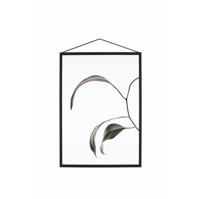 Moebe Moebe floating leaves A3 07 print