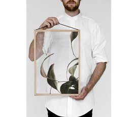 Moebe Moebe floating leaves A3 08 print