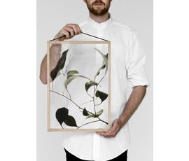 Moebe Moebe floating leaves A3 09 print