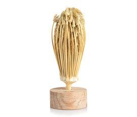 Rivsalt Rivsalt Moroccan toothpicks