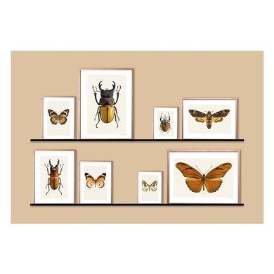 Liljebergs Liljebergs frame 50 x 70 eik