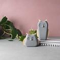 Korridor Design Concrete animal owl