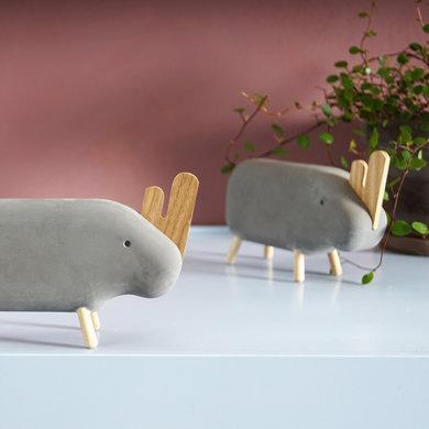 Korridor Design Concrete animal neushoorn