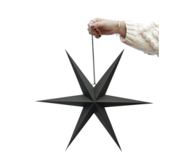 Delight Department Ornament star black set of 2
