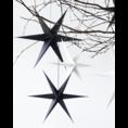 Delight Department Ornament ster zwart set van 2