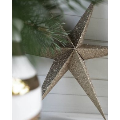 Delight Department Ornament star gold set of 2