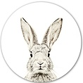 Groovy Magnets Groovy Magnets magnetic sticker bunny