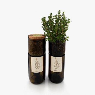 Life in a bag Life in a bag organic herb bottle with thyme
