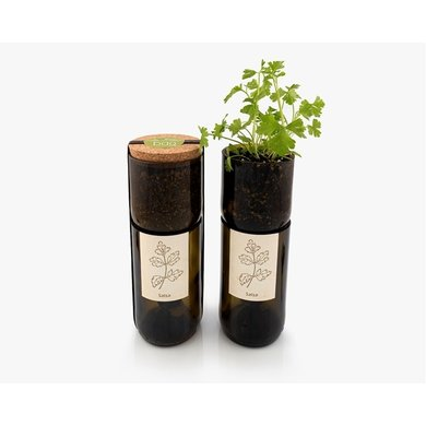 Life in a bag Life in a bag organic herb bottle with parsley