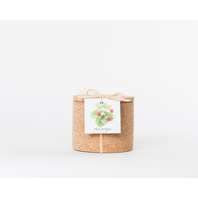 Life in a bag Life in a bag spice jar cork strawberry